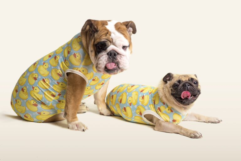 range of pet products toys medication grooming supplies