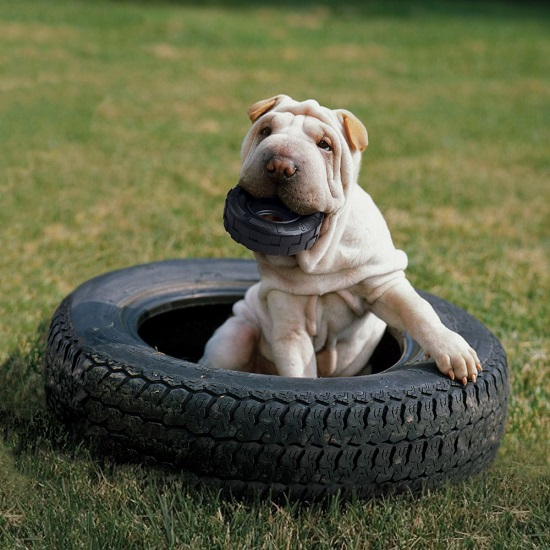 Extreme Tires - 2